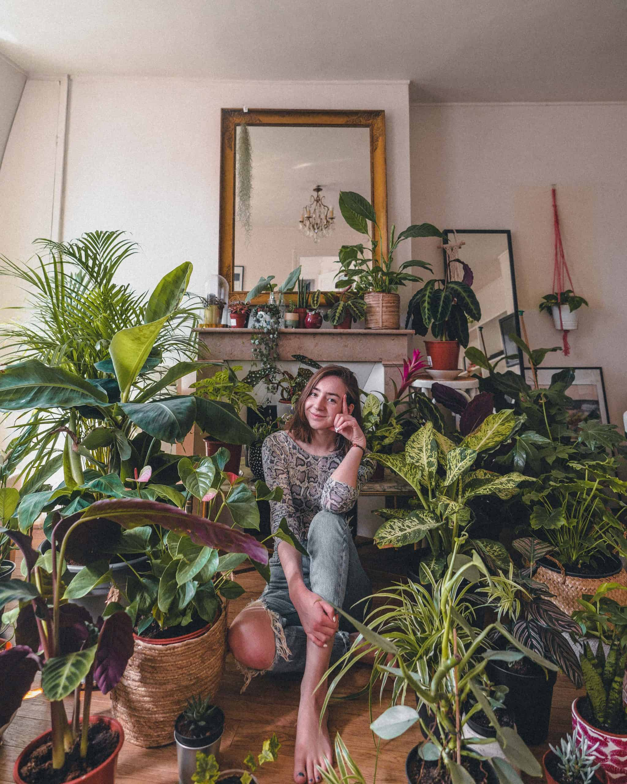 Everything You Wanted to Know About Starting an Indoor Garden